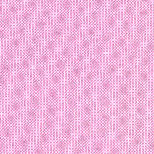 Cotton and Steel Basics - Netorious Melody Pink