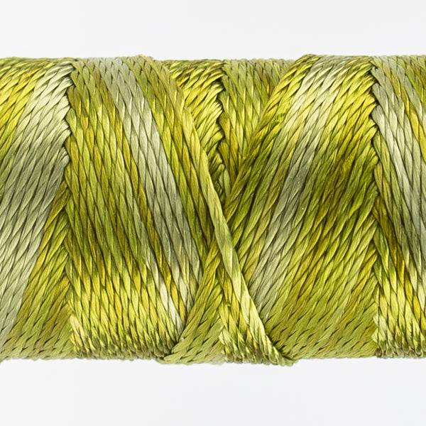 Sue Spargo's Variegated  Razzle Thread - 100% Rayon Thread - RZM09 - Marsh Grass