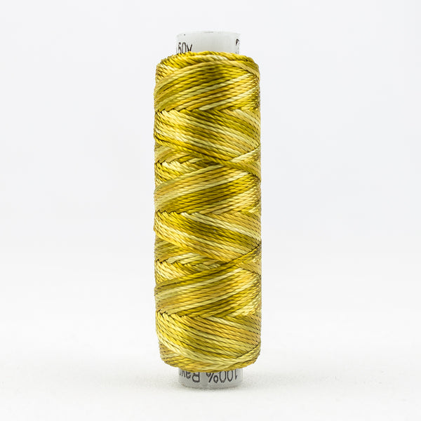 Sue Spargo's Variegated  Razzle Thread - 100% Rayon Thread - RZM10 - Sticky Toffee