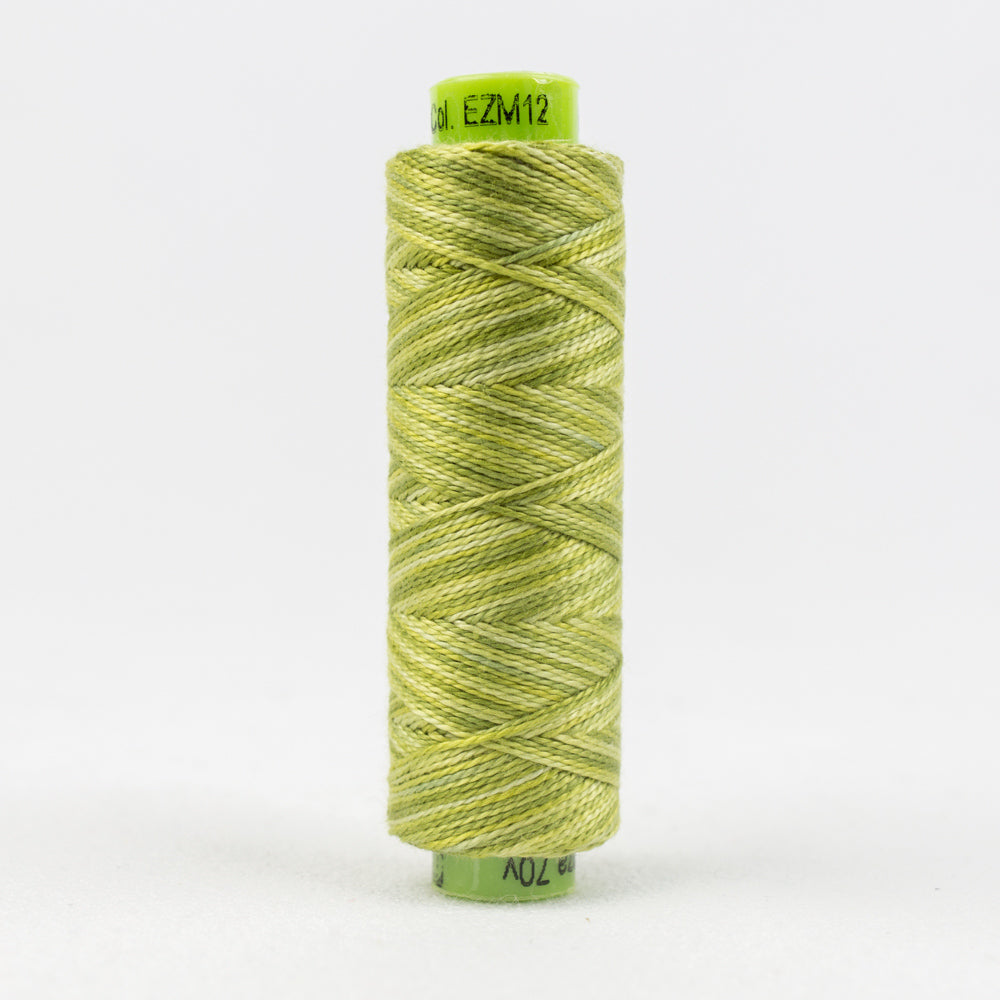 Sue Spargo's Eleganza Pearle Cotton Variegated - Inchworm- EZM12