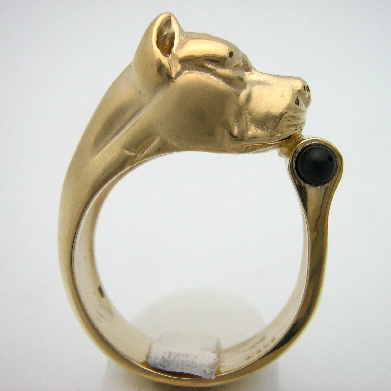 The Pitbull Ring