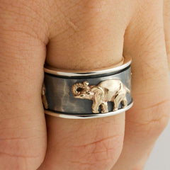 The Spinning Elephant Ring