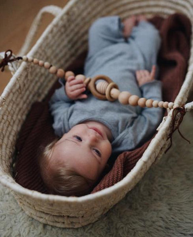 Pram Toy (Moses Basket Toy)