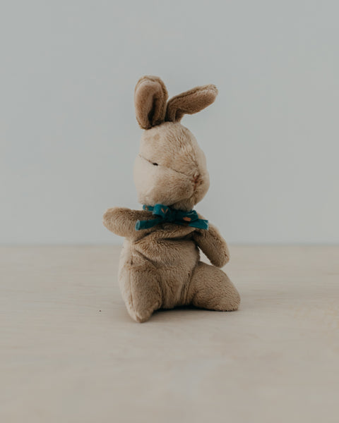 Baby Bunny, Blue Ribbon