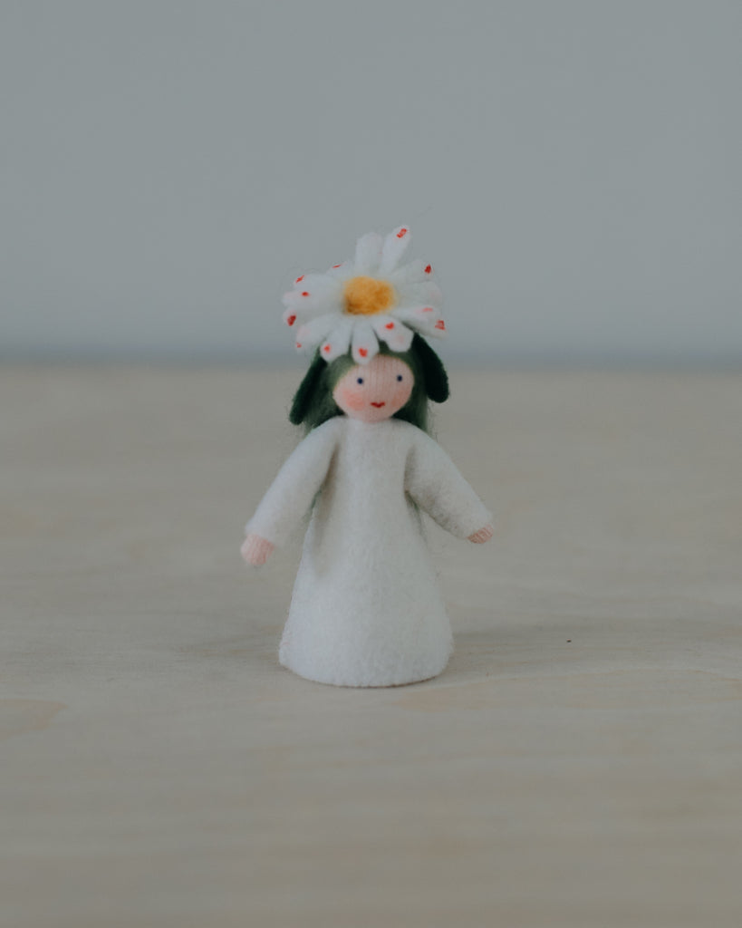 Common Daisy Flower Fairy