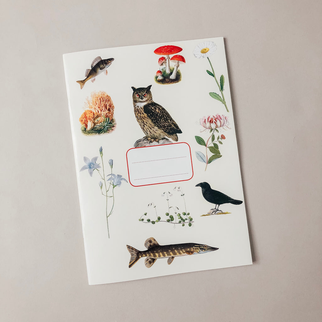 Nature Story Journal - Wild Creek Co