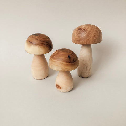Wooden Mushrooms - set of 3 - Wild Creek Co