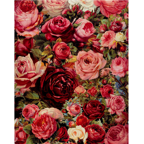 Roses diy painting by numbers 15x20in digital painting acrylic paint flowers-NicheCategory