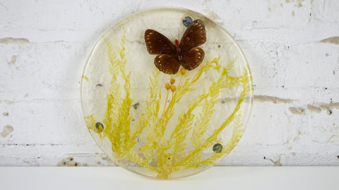 Vintage Resin Real Butterfly Trivet Yellow