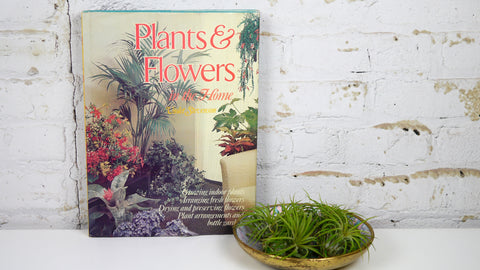 1970s Vintage Plants and Flowers in the Home Book by Violet Stevenson