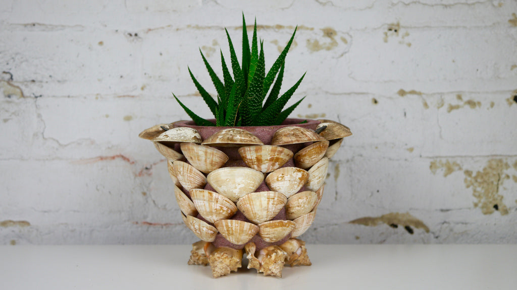 Vintage Seashell Terra Cotta Planter Shell