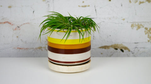 Vintage 1980s Striped Ceramic Planter Yellow Brown Tan Saucer Drainage Hole