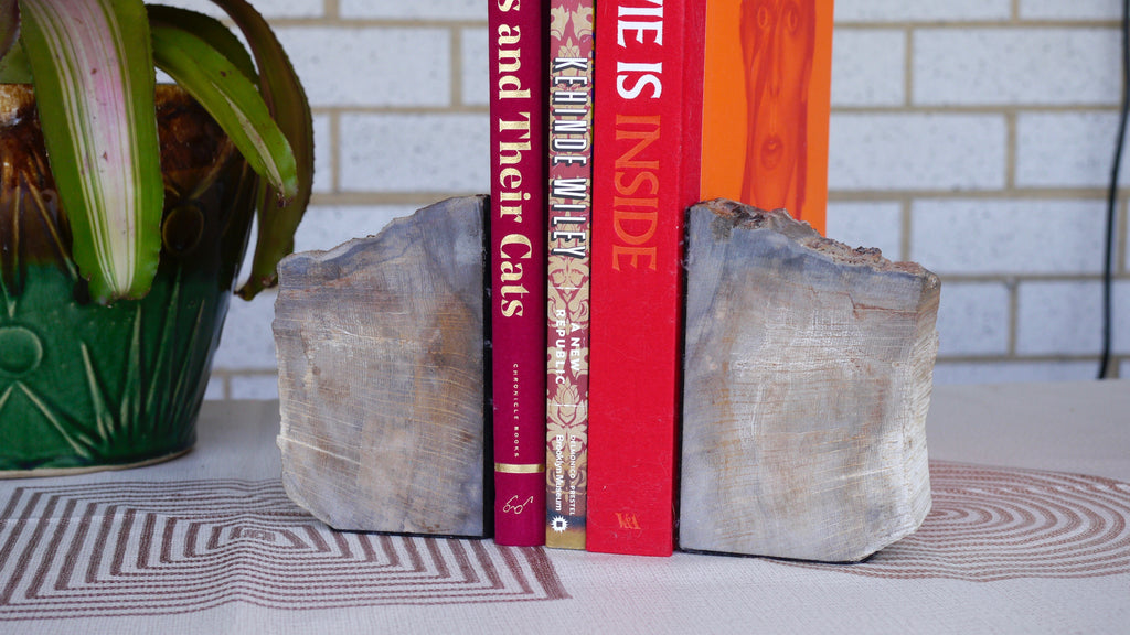 Vintage Petrified Wood Bookends