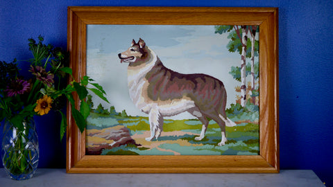Mid Century Collie Dog Paint by Number in Frame
