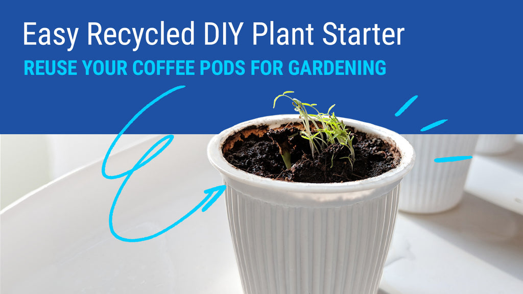 Easy Recycled DIY Plant Starter - Reuse Your Coffee Pods for Gardening