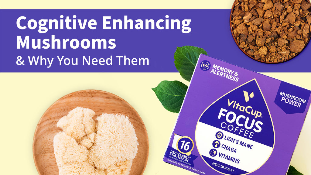Cognitive Enhancing Mushrooms + Why You Need Them