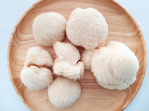 Fabulous food for thought number 1; brain food lions mane mushroom.