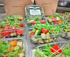fit organix organic food fresh meal delivery toronto