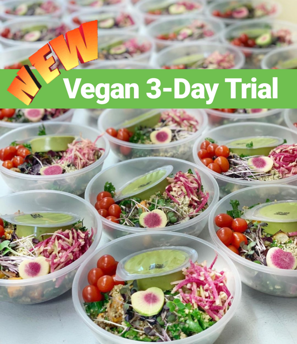3-Day Trial - Vegan Plan