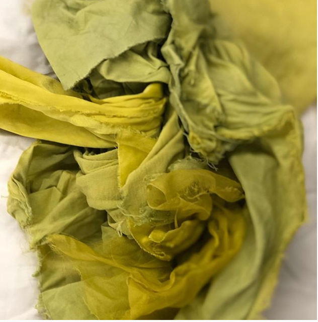 Online Natural Dye Consultation