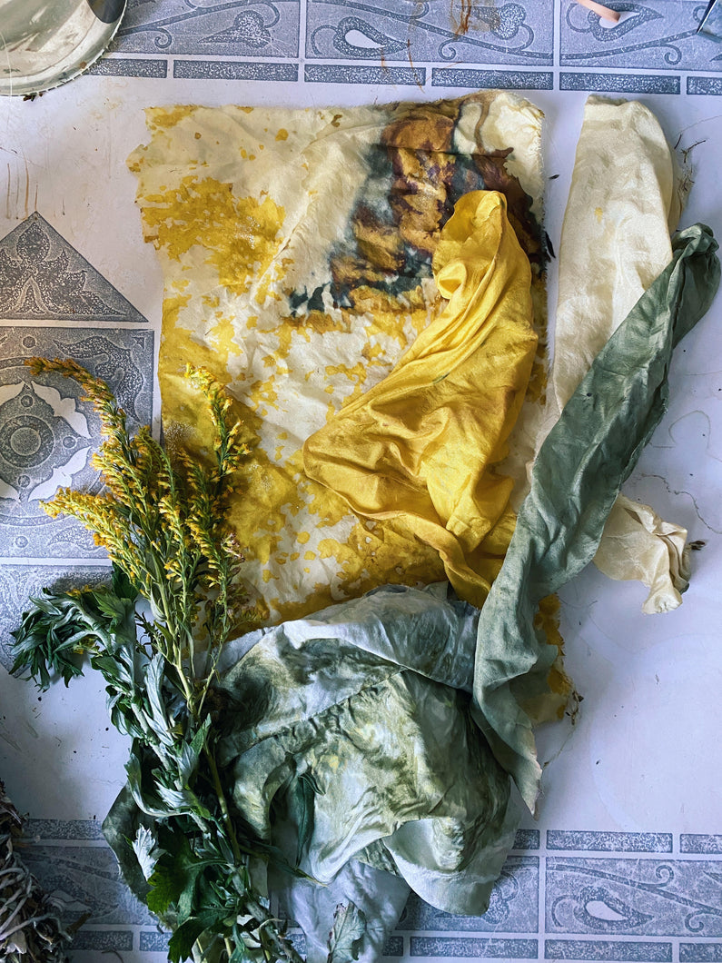 Fashion Fights Cancer x Foraged and found Natural Dye Class