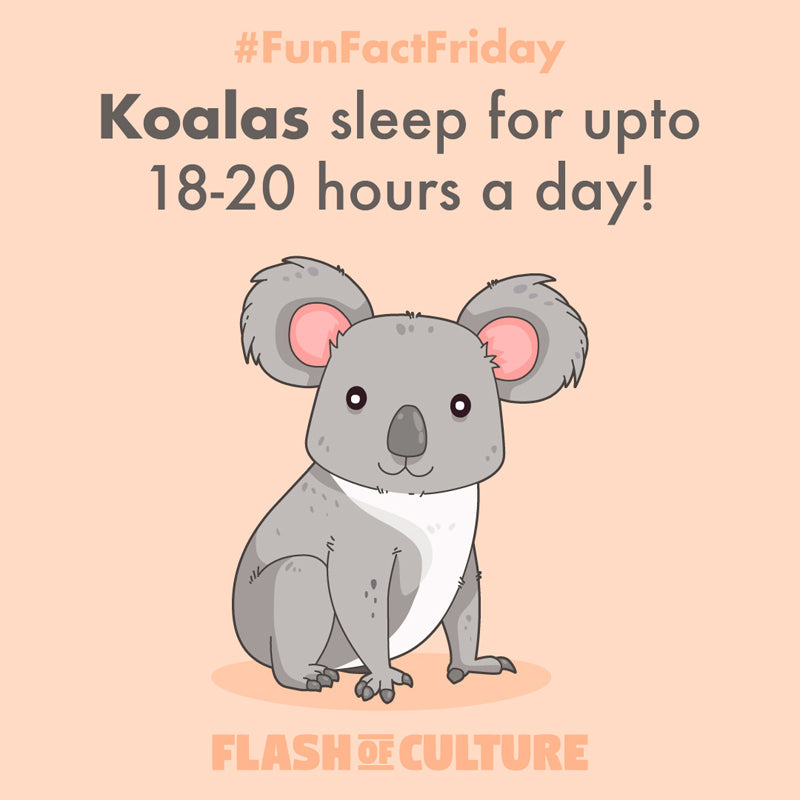 Koalas sleep for up to 18-20 hours a day!