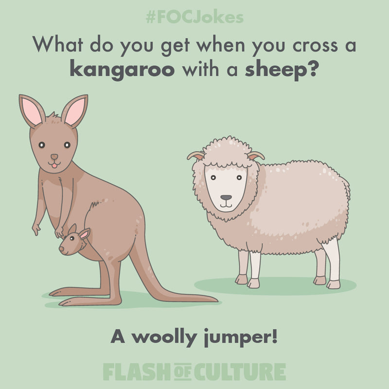 What do you get when you cross a kangaroo with a sheep?