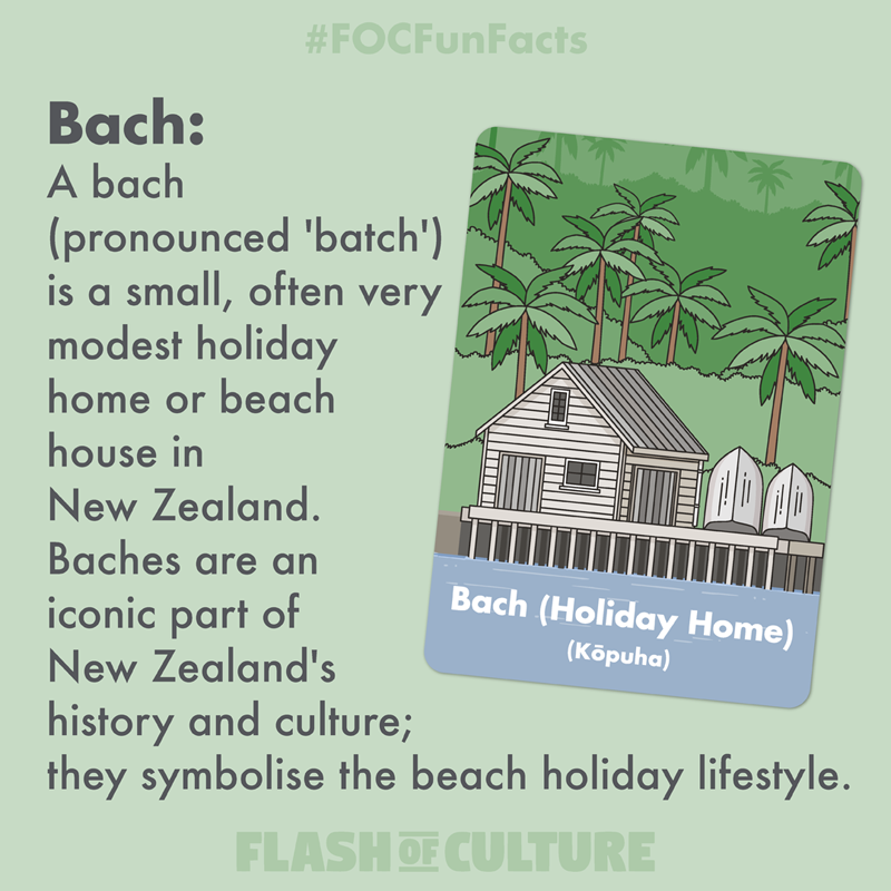 What is a New Zealand Bach?