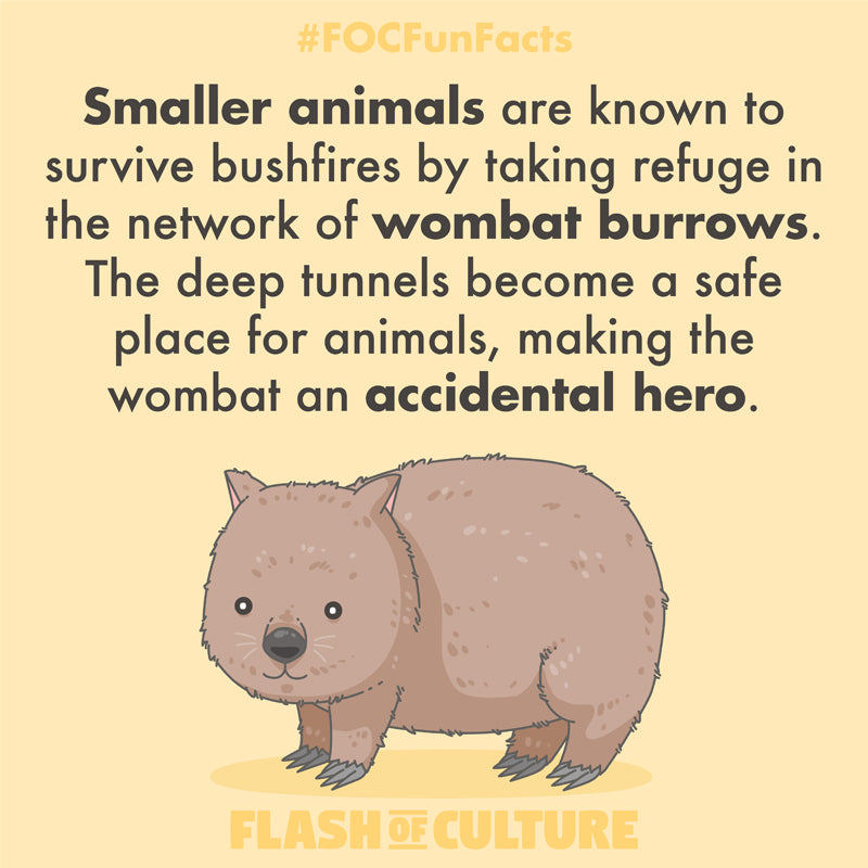 Wombat burrows during bushfires fun fact