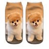 Happy Pomeranian Puppy Ankle Socks - Dollar Socks Club