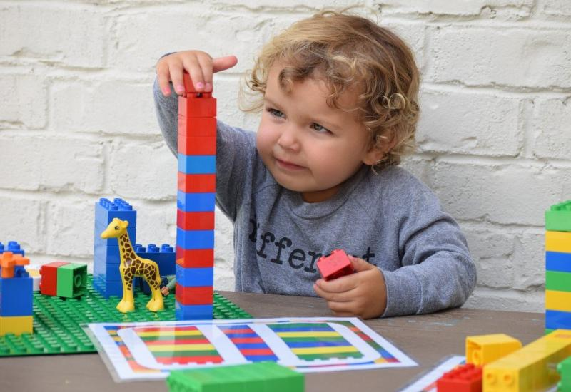 Duplo Stacking and Sorting Activity Set