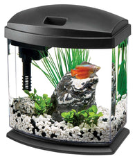 Aqueon MiniBow 1 Aquarium Kit - Bay Bridge Aquarium and Pet