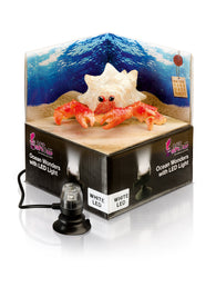 H2Show Ocean Wonders Hermit Crab & White LED Light - Bay Bridge Aquarium and Pet