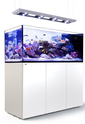Red Sea Reefer Peninsula P650 Deluxe System - 4 units Hydra 26HD LED Lights