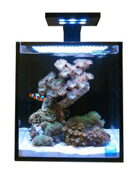 Innovative Marine NUVO Aquarium - Fusion Nano 10 - Bay Bridge Aquarium and Pet