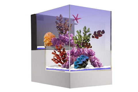 Innovative Marine NUVO Concept - ABYSS Peninsula Kit - Bay Bridge Aquarium and Pet