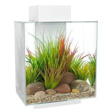 Fluval Edge Aquarium Kit. 12 US GAL. ( 46 L )