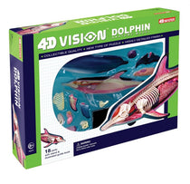 4D Vision Dolphin Anatomy Model  by Tedco Toys