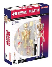 4D Human Anatomy Skeleton Model by Tedco Toys