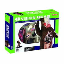 4D Vision Brown Bear by Tedco Toys