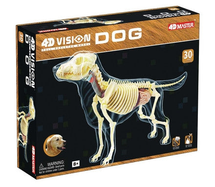 4D Full Skeleton Dog by Tedco Toys