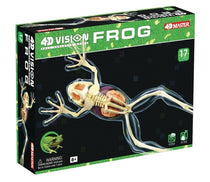4D Full Skeleton Frog Anatomy Model by Tedco Toys