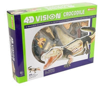 4D Vision Crocodile Anatomy Model by Tedco Toys