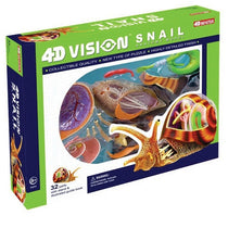 4D Vision Snail Anatomy Model by Tedco Toys