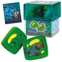 BioSigns Plant Cell by Tedco Toys