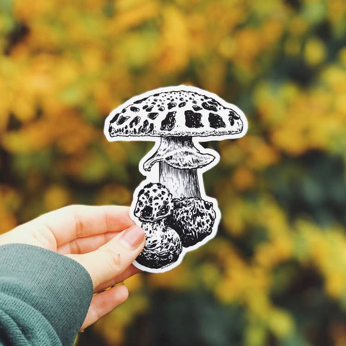 The Mushroom I Vinyl Sticker