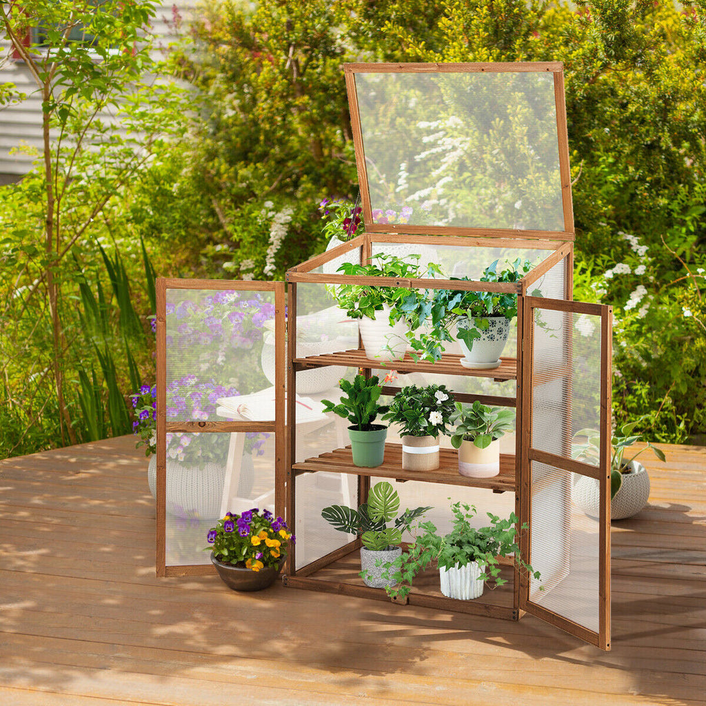 Cold Frame Wooden Greenhouse