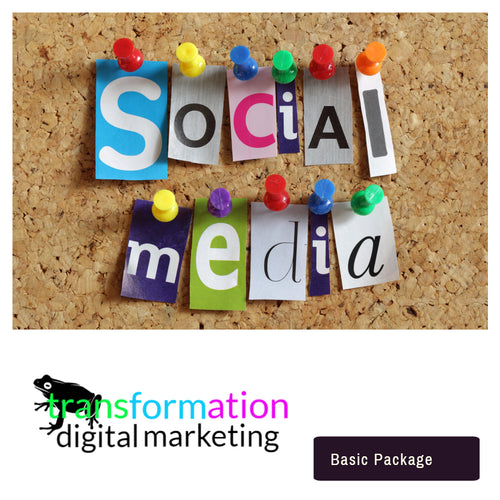 Essential  Social Media Marketing Services  | Frog Transformation - transformation digital marketing