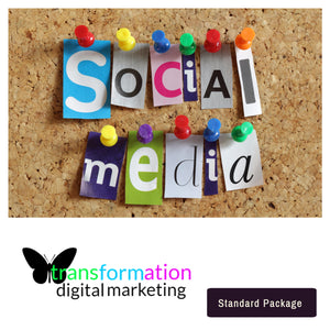 Professional Social Media Marketing Services  | Butterfly Transformation - transformation digital marketing