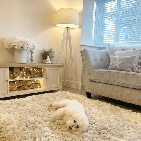 In the colder months, you're quite likely to find Milo the poochon basking in the heat from the log-burning fire while blending in rather well with the rug